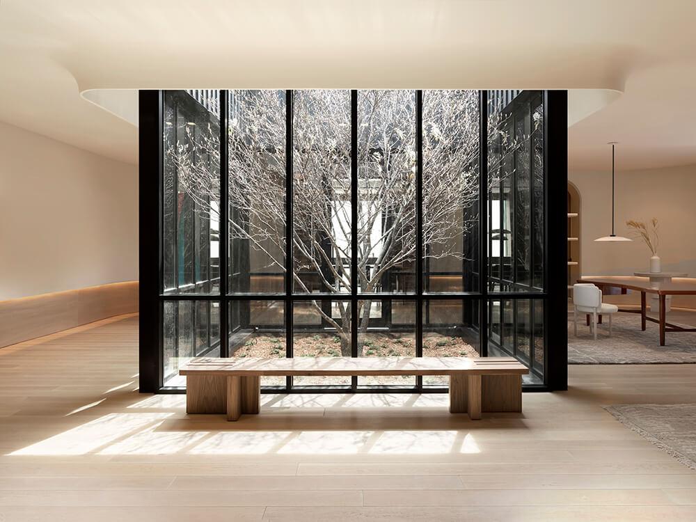 Photo of indigenous serviceberry tree in Zibi House
